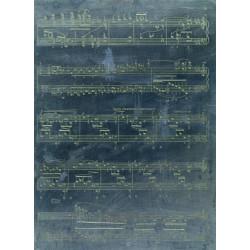 Balkan Accordion