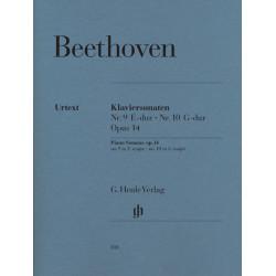 Mini Magic Flute (Band 2 of 4)