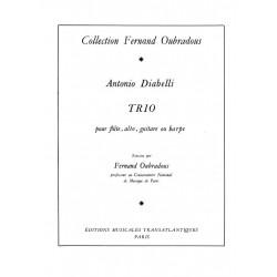 La Guitare Électrique En...